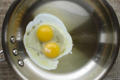 Twin-egg